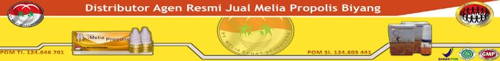 MELIA PROPOLIS ASLI