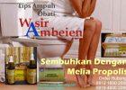 Tips Cara Obati Ambeien Wasir Dengan Melia Propolis