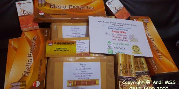 Agen Resmi Jual Melia Propolis Di Padang Panjang