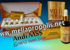 Distributor Melia Propolis Asli Di Pekanbaru