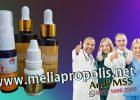 Distributor Melia Propolis Asli Di Namlea