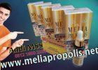 Distributor Melia Propolis Asli Di Tarakan