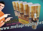 Distributor Melia Propolis Asli Di Dumai