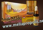 Distributor Melia Propolis Asli Di Buton Utara