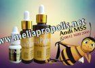 Distributor Melia Propolis Asli Di Jayapura