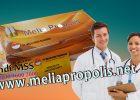 Distributor Melia Propolis Asli Di Lampung
