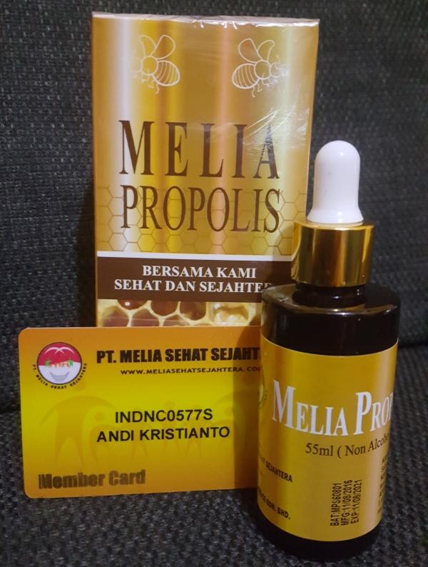 melia-propolis-55ml-asli-mss