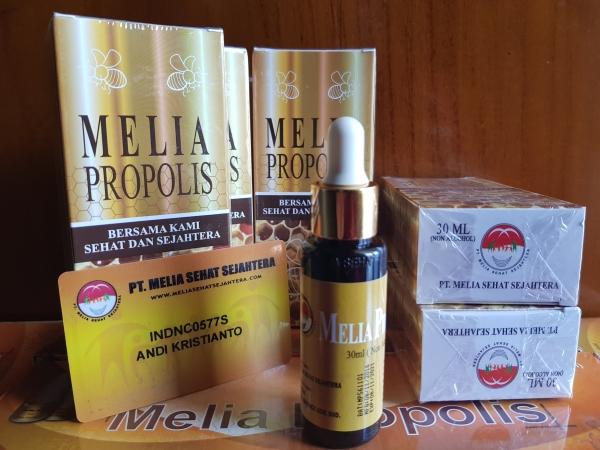 Agen Resmi Jual Melia Propolis Di Banjarbaru