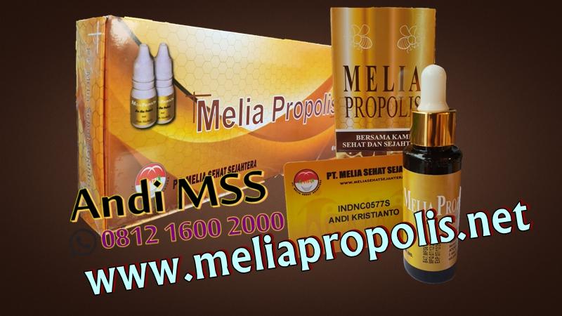 Distributor Melia Propolis Asli Di Selatpanjang
