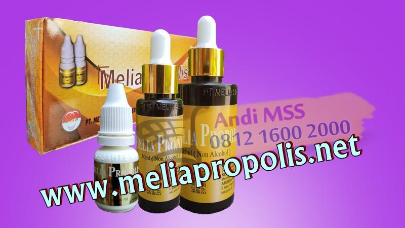 Distributor Melia Propolis Asli Di Kepulauan Meranti